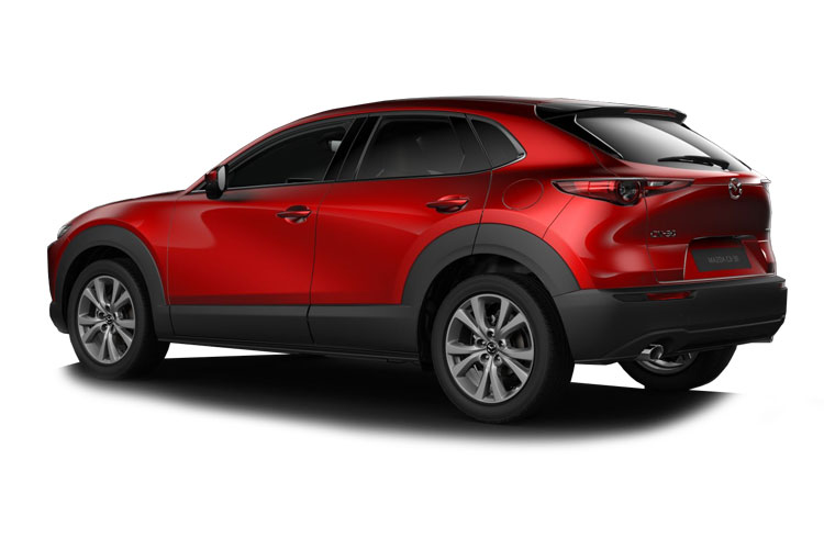 Mazda CX-30 SUV 2.0 e-SKYACTIV G MHEV 122PS SE-L 5Dr Manual [Start Stop] back view